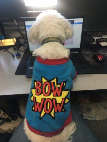 Finnigan Supervising Zoom Call